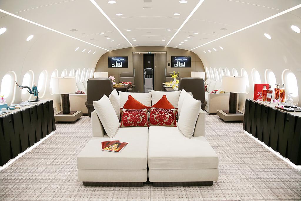 dream-jet-boeing-787-8-bbj-salon